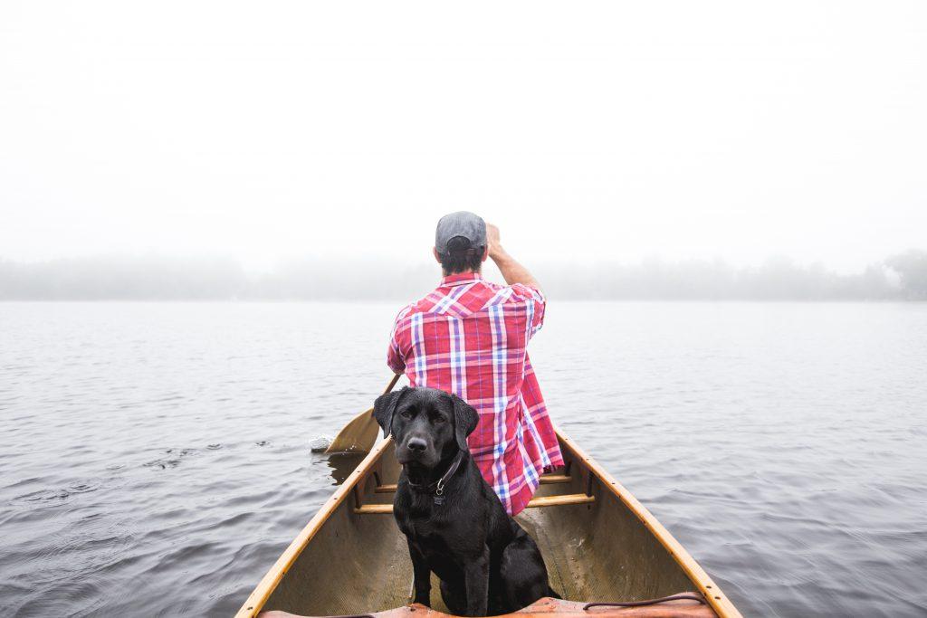 Wer ist einzigartiger: Mensch oder Hund?
